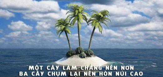 mot cay lam chang nen non ba cay chum lai nen hon nui cao 520x245 - Chứng minh câu tục ngữ Một cây làm chẳng nên non Ba cây chụm lại nên hòn núi cao - Văn mẫu lớp 7
