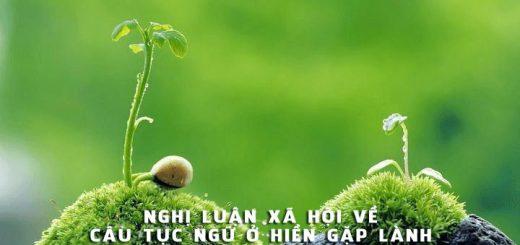 nghi luan ve cau tuc ngu o hien gap lanh 520x245 - Nghị luận xã hội về câu tục ngữ Ở hiền gặp lành - Văn mẫu lớp 9
