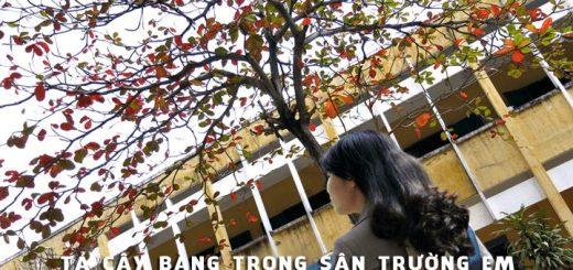 ta cay bang trong san truong 520x245 - Tả cây bàng trong sân trường em - Văn mẫu lớp 2