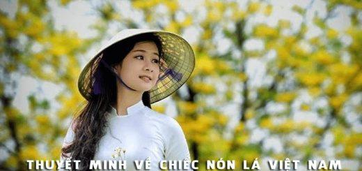 thuyet minh ve chiec non la viet nam 520x245 - Thuyết minh về chiếc nón lá Việt Nam - Văn mẫu lớp 8