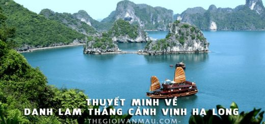 thuyet minh ve vinh ha long 520x245 - Thuyết minh về danh lam thắng cảnh Vịnh Hạ Long - Văn mẫu lớp 8