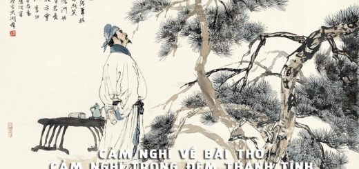 cam nghi bai tho cam nghi trong dem thanh tinh 520x245 - Phát biểu cảm nghĩ về bài thơ Cảm nghĩ trong đêm thanh tĩnh của Lí Bạch