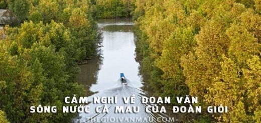 cam nghi ve bai song nuoc ca mau 520x245 - Phát biểu cảm nghĩ của em sau khi đọc đoạn văn Sông nước Cà Mau của Đoàn Giỏi
