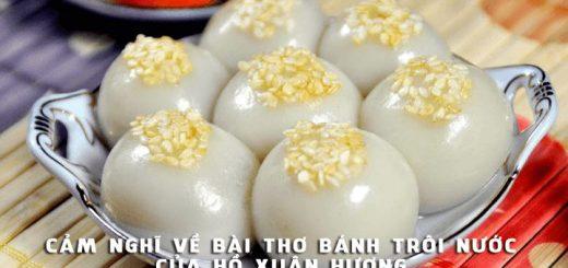 cam nghi ve bai tho banh troi nuoc cua ho xuan huong 520x245 - Phát biểu cảm nghĩ về bài thơ Bánh trôi nước của Hồ Xuân Hương - Văn mẫu lớp 7