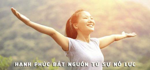 hanh phuc bat nguon tu su no luc 520x245 - Suy nghĩ về câu nói: Hạnh phúc bắt nguồn từ sự nỗ lực