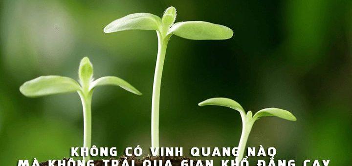 khong co vinh quang nao khong trai qua gian kho dang cay 720x340 - Chứng minh rằng: Không có vinh quang nào mà không trải qua gian khổ đắng cay