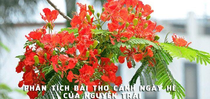 phan tich bai tho canh ngay he cua nguyen trai 720x340 - Phân tích bài thơ Cảnh ngày hè của Nguyễn Trãi