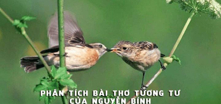 phan tich bai tho tuong tu cua nguyen binh 720x340 - Phân tích bài thơ Tương tư của Nguyễn Bính