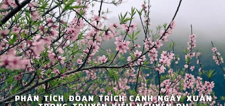 phan tich doan trich canh ngay xuan 720x340 - Phân tích đoạn trích Cảnh ngày xuân trong Truyện Kiều
