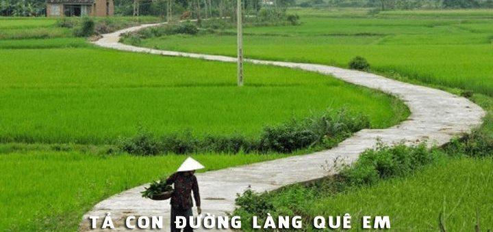 ta con duong lang que em 720x340 - Tả con đường làng quê em - Văn mẫu lớp 6