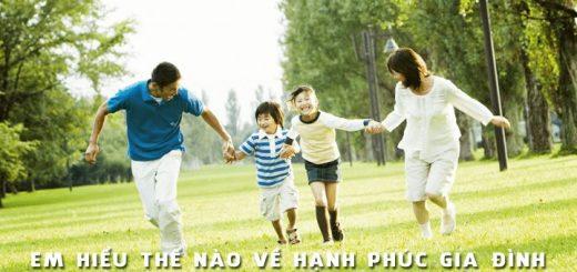 the nao la hanh phuc gia dinh 520x245 - Em hiểu thế nào về hạnh phúc gia đình
