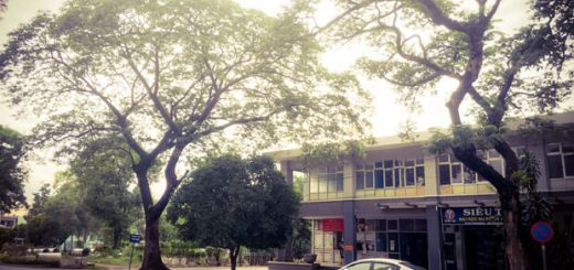 5247396 image 520x245 - Hoàn cảnh ra đời bài thơ Tây Tiến (Quang Dũng)