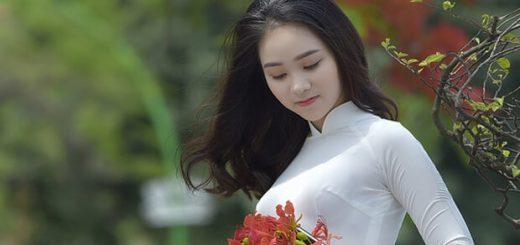 7194 1494911290054 1015 520x245 - Hoàn cảnh ra đời bài thơ Tây Tiến (Quang Dũng)