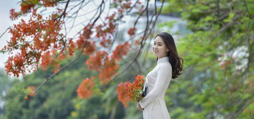 7225 1494911290059 1017 520x245 - Hoàn cảnh ra đời bài thơ Tây Tiến (Quang Dũng)