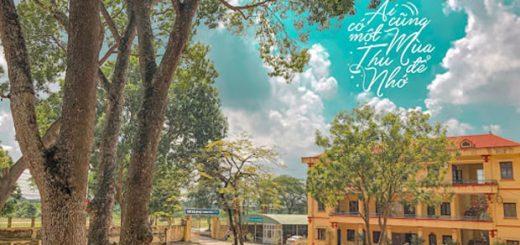 unnamed 520x245 - Bộ sách dịch Hạt giống tâm hồn do Nhà xuất bản Tổng hợp Thành phố Hồ Chí Minh ấn hành đang được giới trẻ đón nhận rất nồng nhiệt. Em hãy nêu những suy nghĩ của mình về một trong những cuốn sách trong bộ sách dịch đó